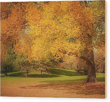 As The Leaves Fall Wood Print by Kim Hojnacki