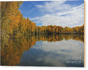 As The Leaves Turn Wood Print by Bob Hislop
