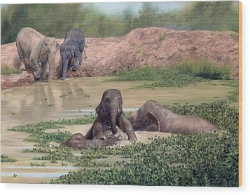 Asian Elephants - In Support Of Boon Lott's Elephant Sanctuary Wood Print
