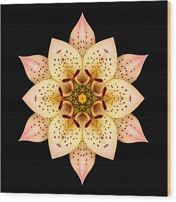 Asiatic Lily Flower Mandala Wood Print