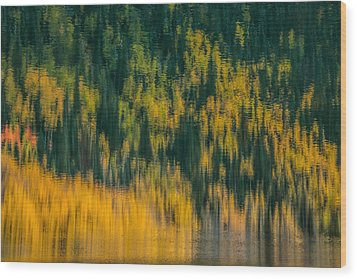 Wood Print featuring the photograph Aspen Abstract by Ken Smith