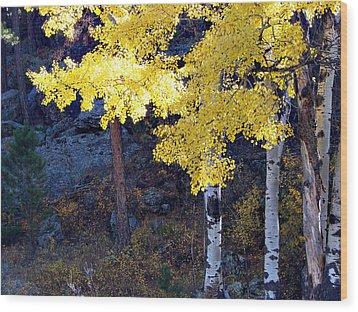 Aspen Bright Wood Print by Linda Cox
