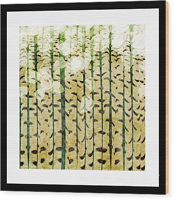 Aspen Colorado Abstract Square 3 Wood Print by Andee Design