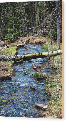 Wood Print featuring the photograph Aspen Crossing Mountain Stream by Barbara Chichester