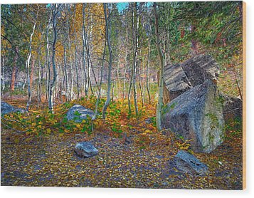 Wood Print featuring the photograph Aspen Grove by Jim Thompson