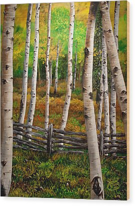 Aspen Meadow Wood Print by Jessica Tookey