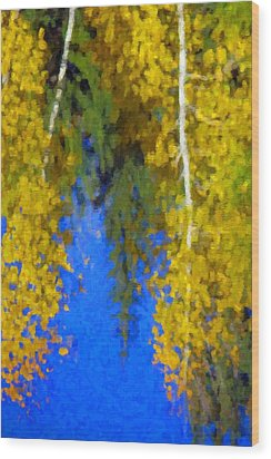 Aspen Reflection Wood Print by Pat Now