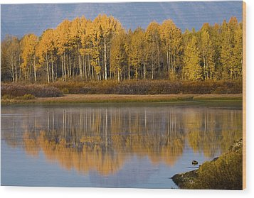 Wood Print featuring the photograph Aspen Reflection by Sonya Lang