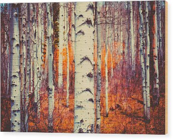 Aspenglow Wood Print by Roger Chenery
