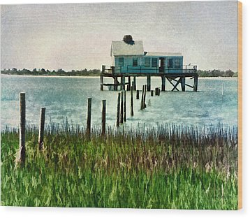 Assateague Abandon Wood Print