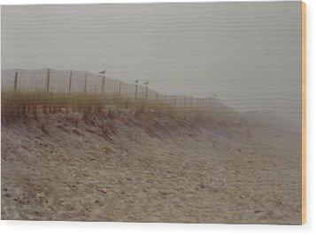 Assateague Dunes Wood Print by Joann Renner
