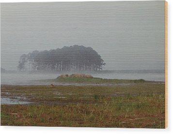 Assateague Fog Wood Print by Joann Renner