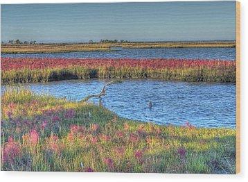 Asseteague Island Salt Marsh Wood Print