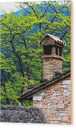 Wood Print featuring the photograph Assisi 2 by Theresa Ramos-DuVon
