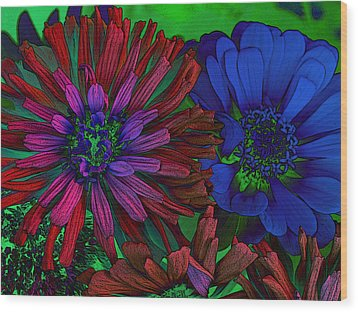 Asters Wood Print by David Pantuso