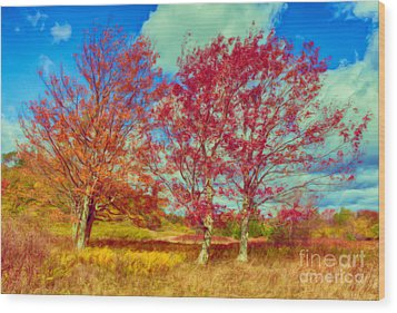 Astonishing Autumn - Fall Colors At Dolly Sods II Wood Print by Dan Carmichael