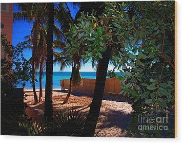 At Dog's Beach In Key West Wood Print by Susanne Van Hulst