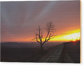 At First Light Wood Print by Everett Houser