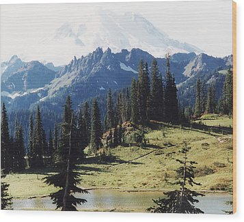 Wood Print featuring the photograph At Mt. Rainiers Feet by Myrna Walsh