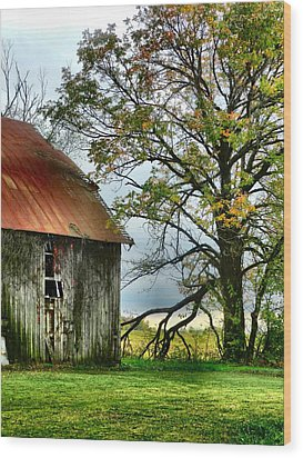 At The Barn Wood Print by Julie Dant