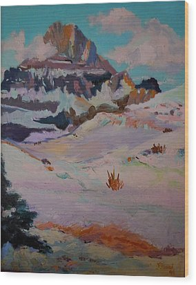 At The Top - Glacier National Park Wood Print by Francine Frank