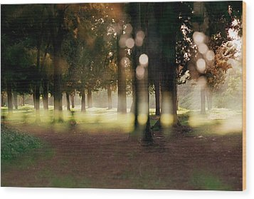Wood Print featuring the photograph At The Yarkon Park Tel Aviv by Dubi Roman