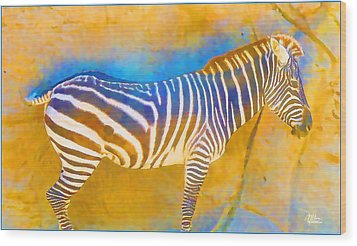 At The Zoo - Zebras Wood Print