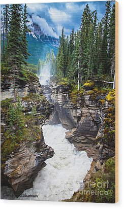 Athabasca Falls Wood Print by Chris Heitstuman