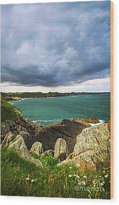 Atlantic Coastline In Brittany Wood Print by Elena Elisseeva