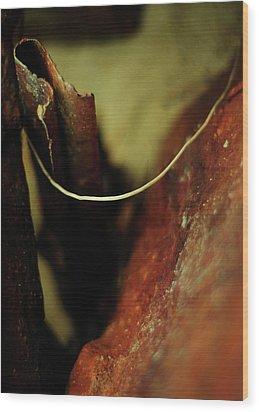 Atonement Wood Print by Rebecca Sherman