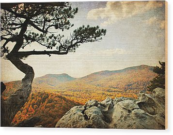 Atop The Rock Wood Print