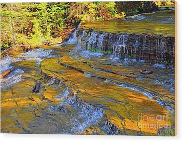 Au Train Falls Wood Print by Terri Gostola