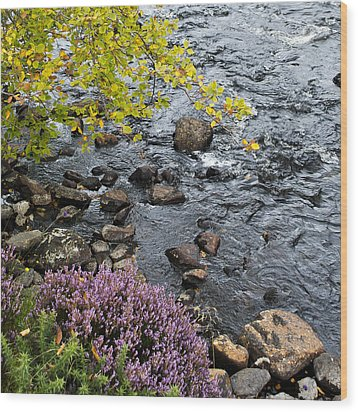 Wood Print featuring the photograph August Palette Scotland by Sally Ross