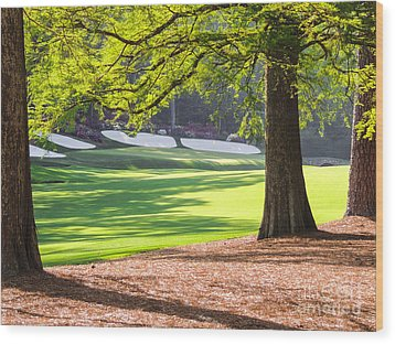 Augusta  Phils' View At 13 Wood Print