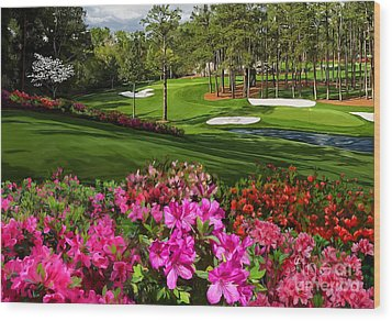 Augusta Azaleas 16th And 6th Wood Print
