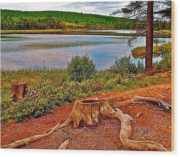 Aunt Betty Pond In Acadia National Park-maine  Wood Print by Ruth Hager