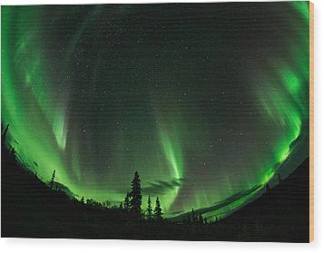 Aurora Embrace Wood Print by Roger Clifford
