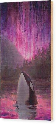 Aurora Orca Wood Print by Karen Whitworth