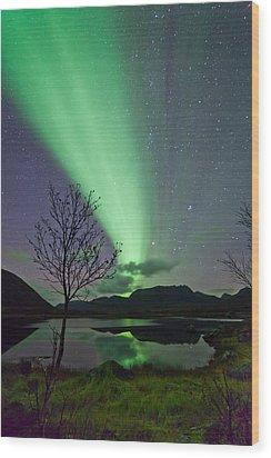 Auroras And Tree Wood Print
