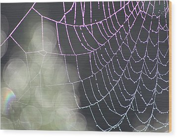 Wood Print featuring the photograph Aurora's Web by Cathie Douglas
