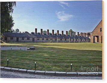 Auschwitz-3 Wood Print