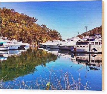 Aussie Blues Wood Print by Marty  Cobcroft