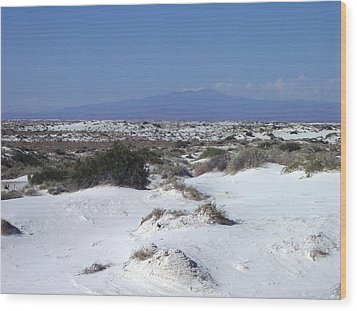 Austere Landscape  Wood Print by The GYPSY And DEBBIE