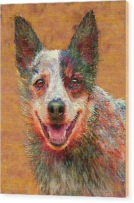 Australian Cattle Dog Wood Print by Jane Schnetlage