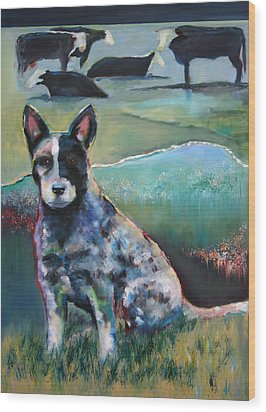 Australian Cattle Dog With Coat Of Many Colors Wood Print