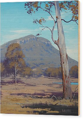 Australian Summer Landscape Wood Print by Graham Gercken