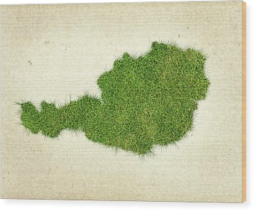 Austria Grass Map Wood Print by Aged Pixel
