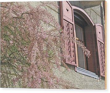 Austrian Spring Wood Print by Ann Horn