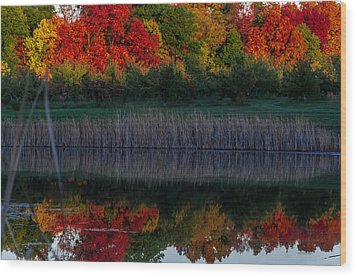 Autum At Orchard Pond Wood Print by Gene Sherrill