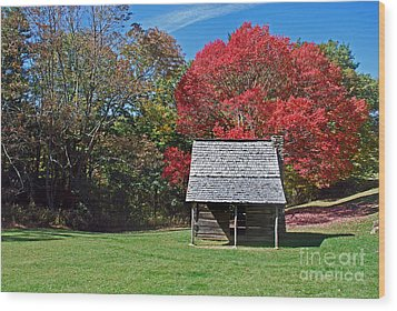 Autum For A Mountain Home Wood Print by Skip Willits